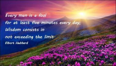 FOOL - WISDOM